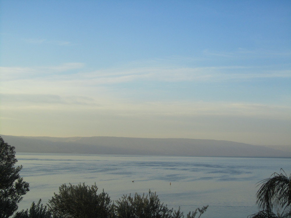 The Sea of Galilee from Tabgha