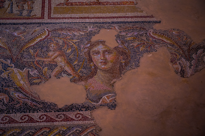 "This is the most finely crafted ancient mosaic in all of Israel. Located in Sepphoris, it is known as the ""Mona Lisa of Galilee."""