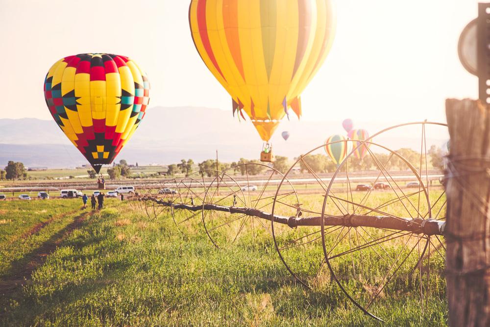 HeidiRandallStudios-Events-BalloonFestival1.jpg