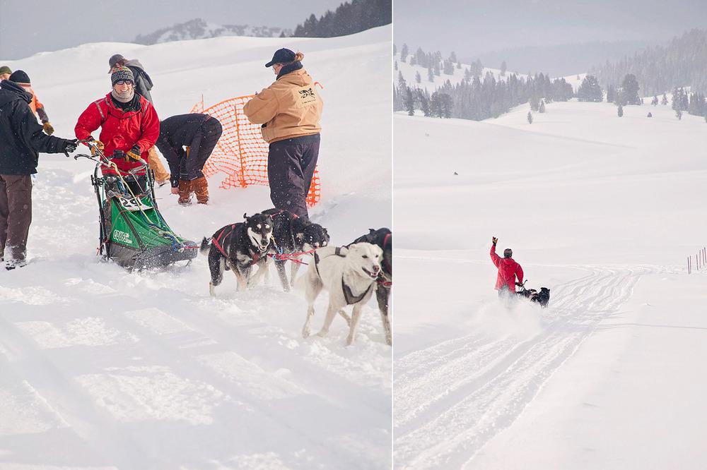 LoganUtahPhotography-HeidiRandallStudios-DogSledders-6.jpg