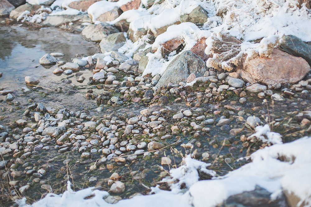 LoganUtahEngagementPhotography-HeidiRandallStudios-25.jpg
