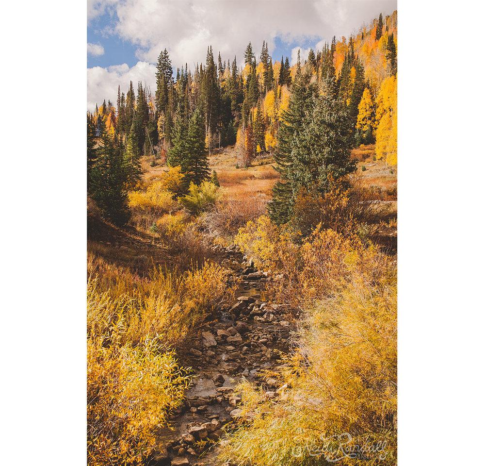 UtahFallLandscape-HeidiRandallStudios-2016-32.jpg
