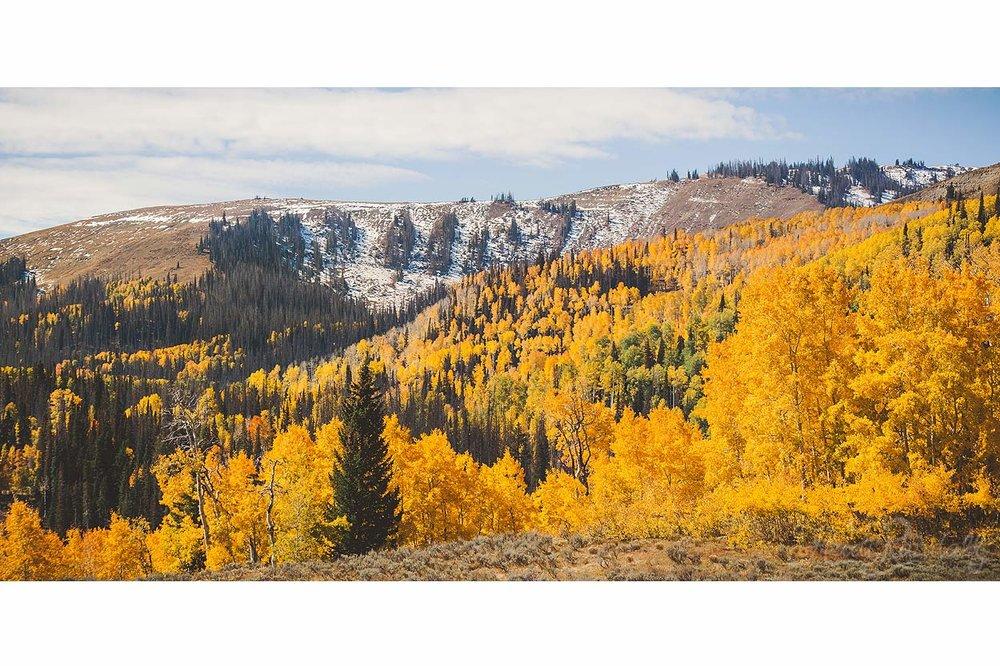 UtahFallLandscape-HeidiRandallStudios-2016-11.jpg