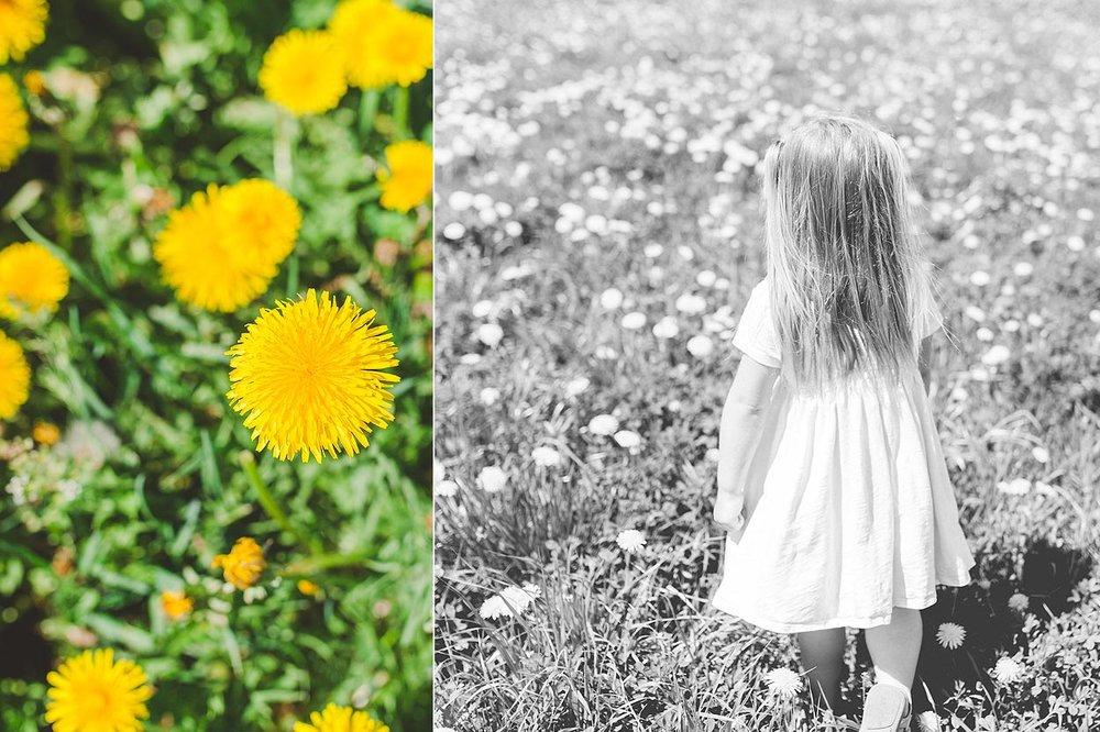 BLOG-LoganUtahFamilyPhotography-HeidiRandallStudios-DandelionKids-21.jpg