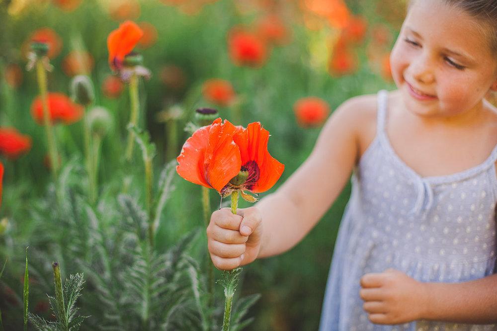 BLOG-LoganUtahFamilyPhotography-HeidiRandallStudios-Poppies-4.jpg