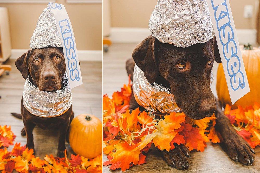 BLOG-LoganUtahPortraitPhotography-HeidiRandallStudios-HalloweenStyledShoot-Markell-ZOEY-2.jpg