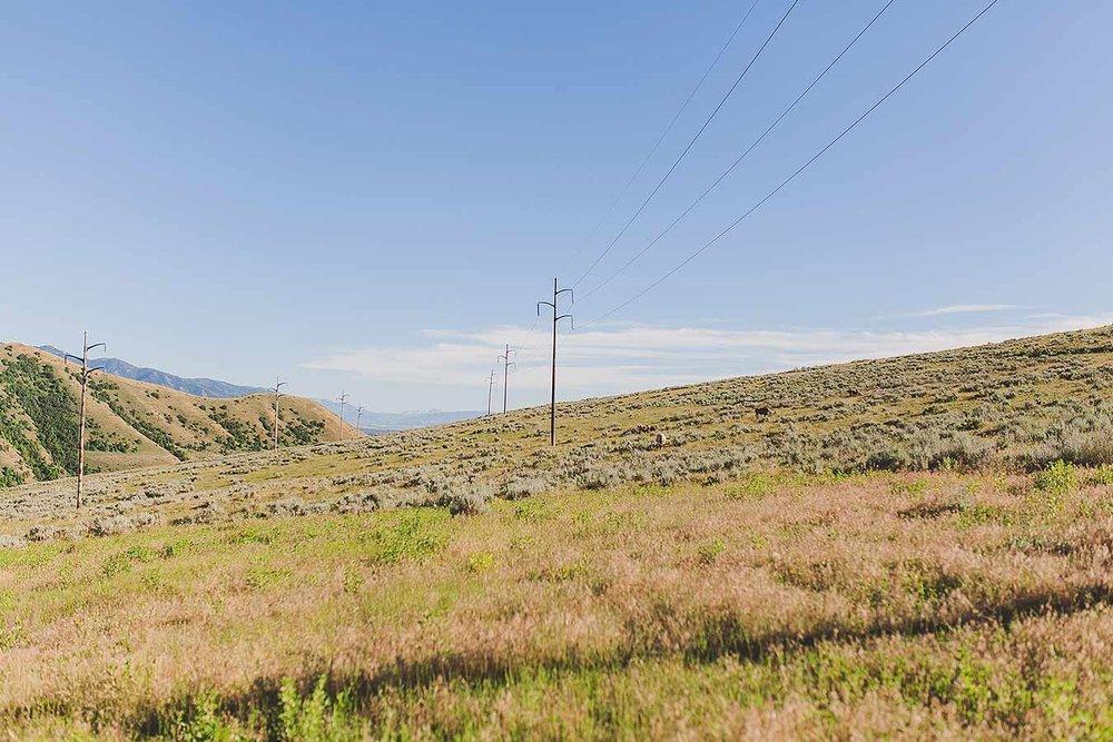Westernartphotography-heidirandallstudios-1.jpg