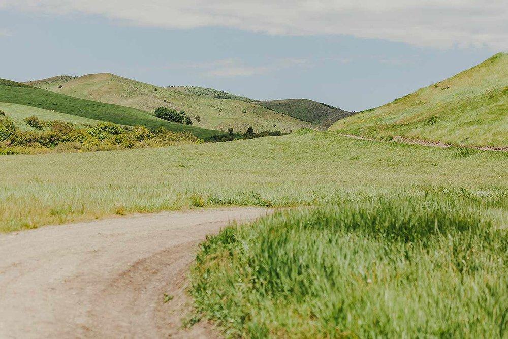 Westernartphotography-heidirandallstudios-Havilands-1.jpg