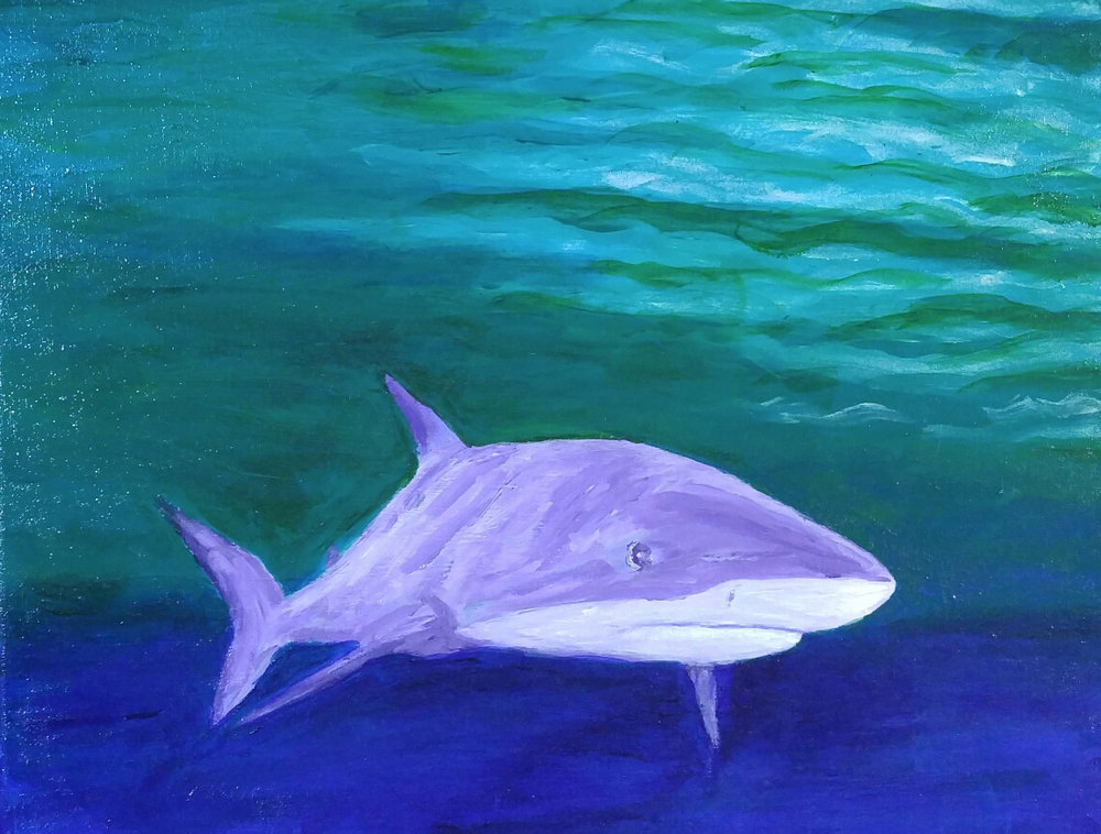"The Friendly Shark , 2015 by Gerda Wirick. Acrylic painting on cotton canvas, 16"" x 20"""
