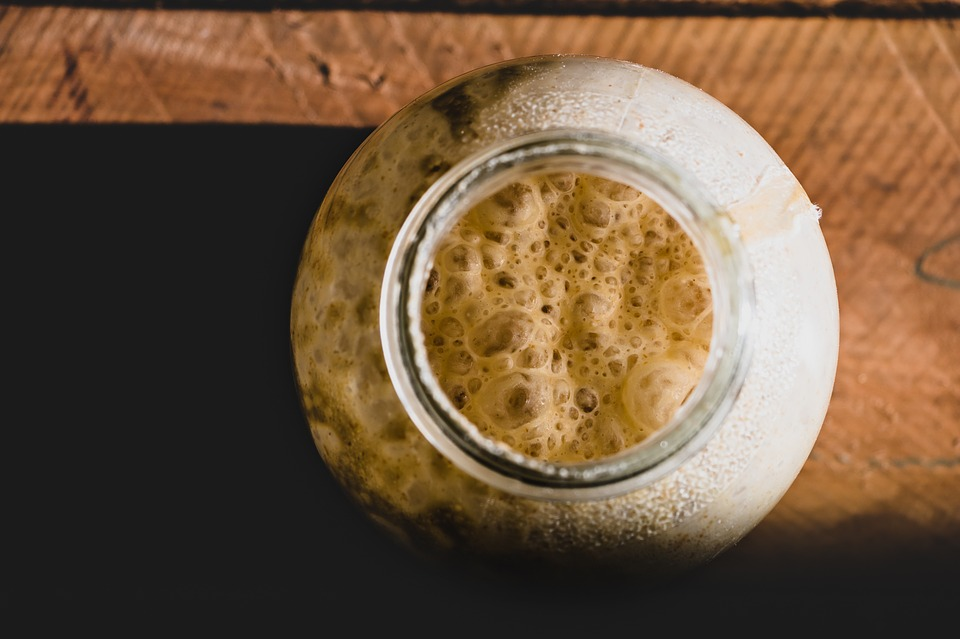 10 Days to the Perfect, Bubbly Sourdough Starter, from Scratch! - by Andrea Schmidt