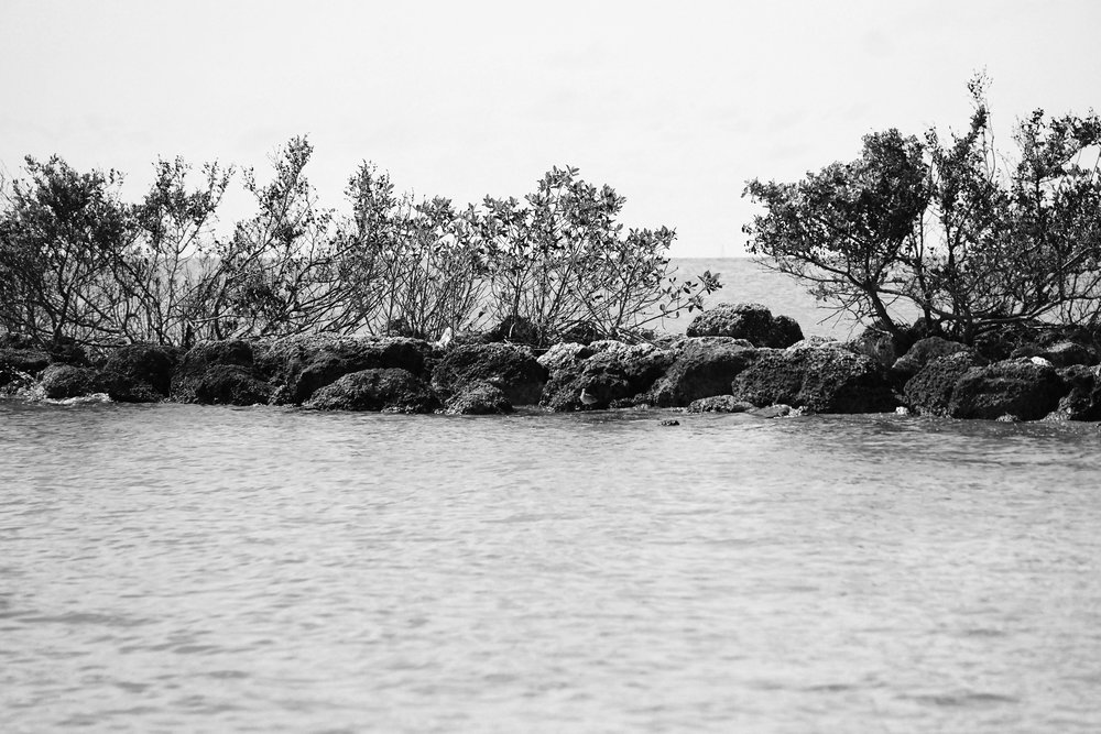 Black and White Key West Ocean Photography