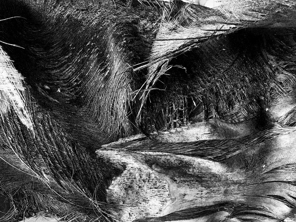 Black And White Texture Photograph