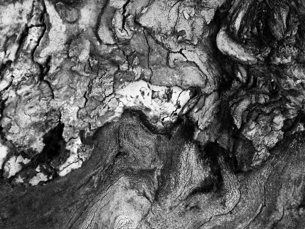 abstract black and white wood photography