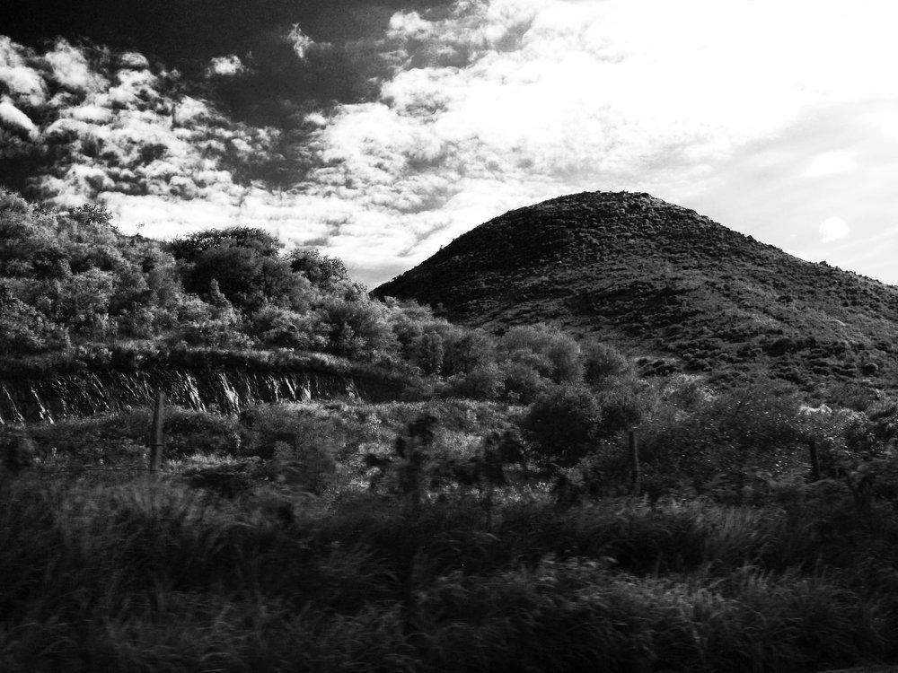 black and white st. Martin nature photograph