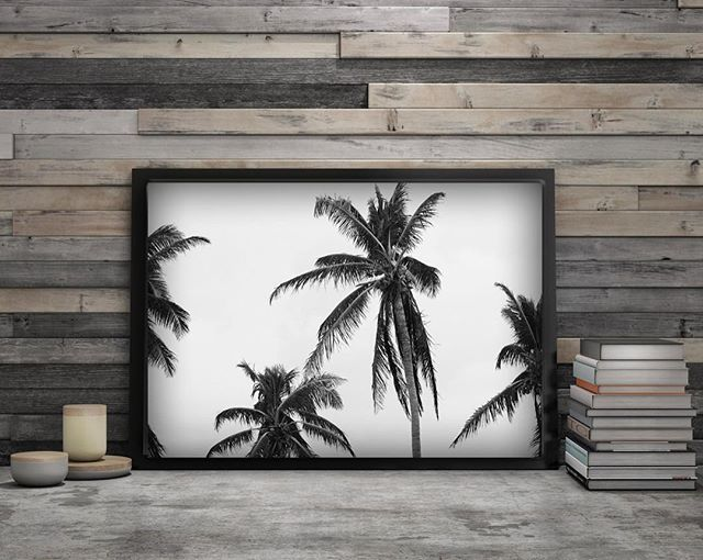 Channeling these palm trees to bring back the sun!! #victoriamiritellophotography #blackandwhitephotography #photographyprints #sweptseries