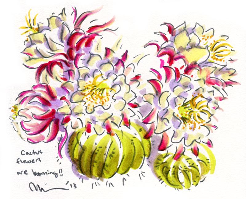 booming-cactus.jpg