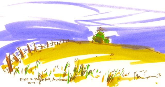 dalesford field.jpg