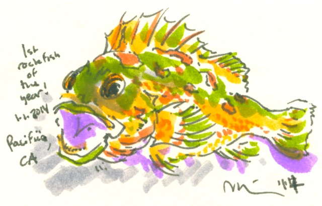 rockfish pacifica.jpg