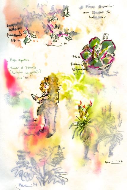 lotusland 1.jpg