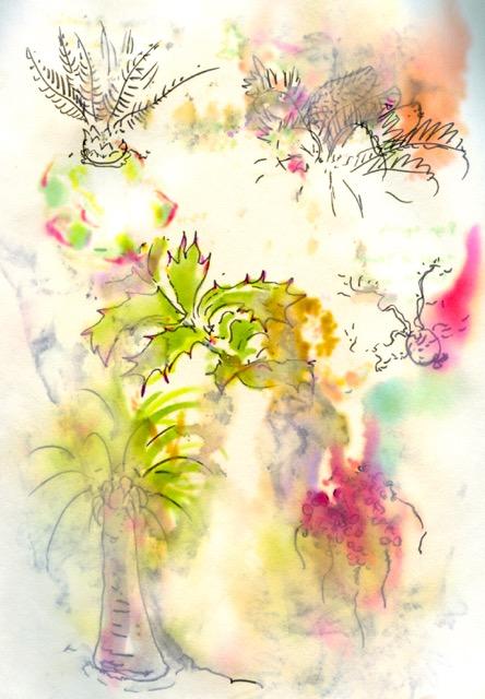 lotusland 2.jpg