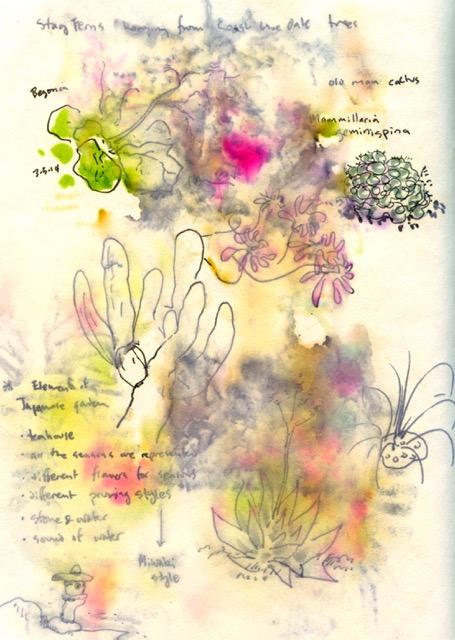 lotusland 6.jpg