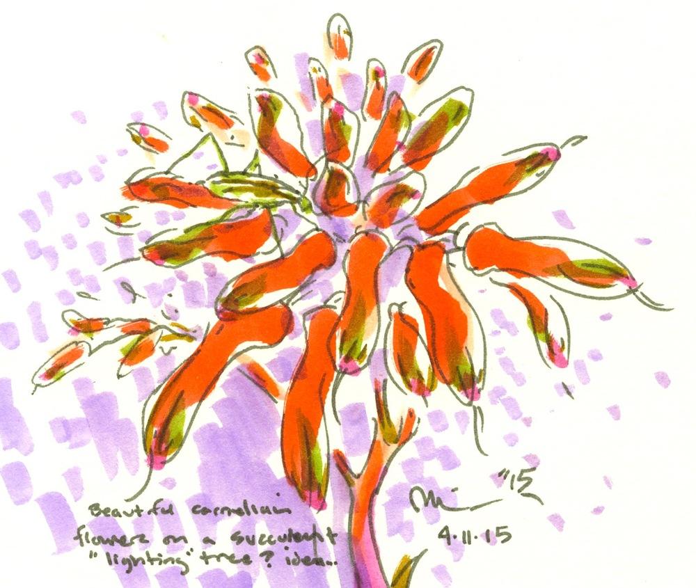 carnelian flowers succ.jpg