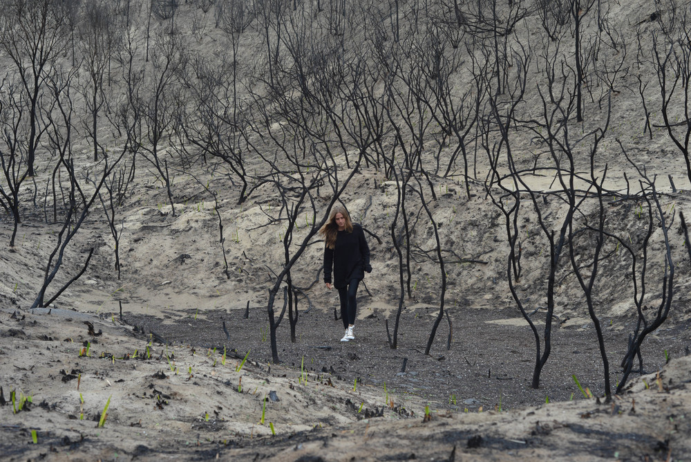 After a bush fire, Coffin Bay National Park in South Australia.