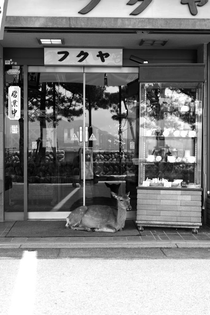 Hiroshima 27.jpg