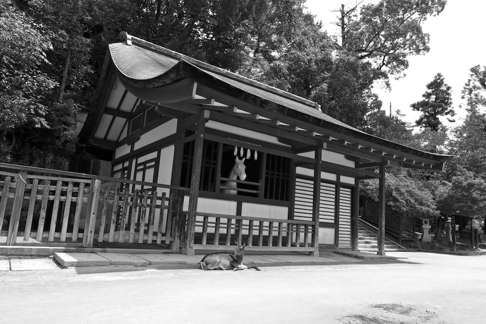 Hiroshima 19.jpg