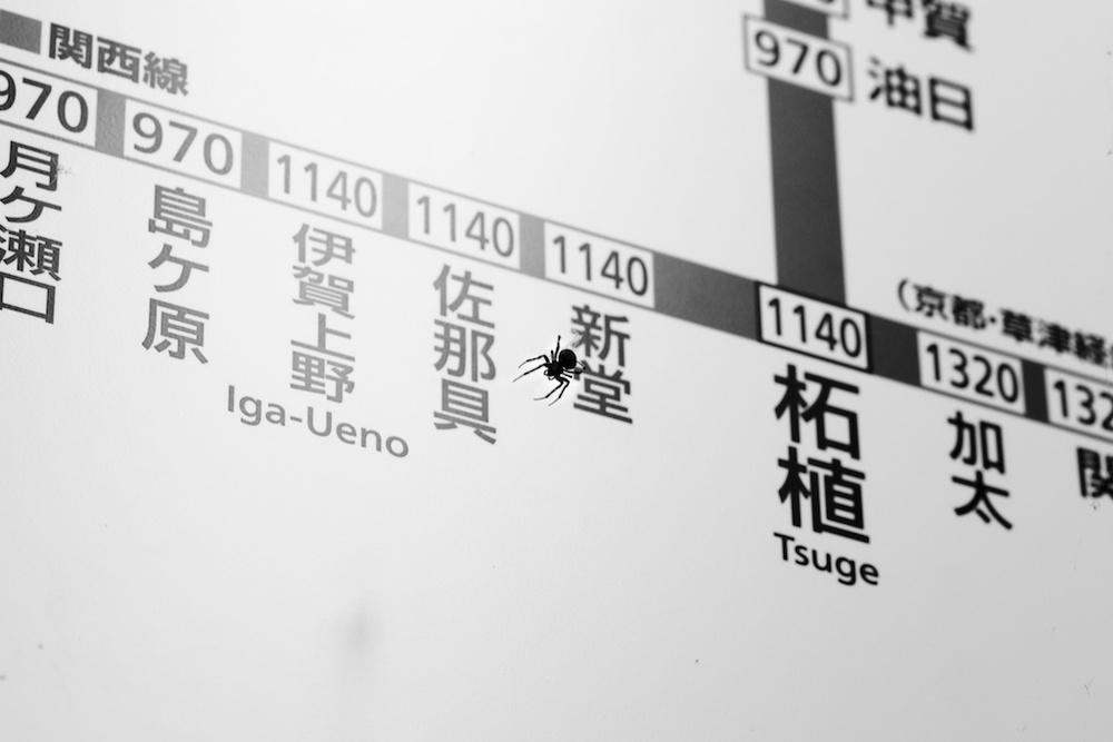Kyoto 13.jpg