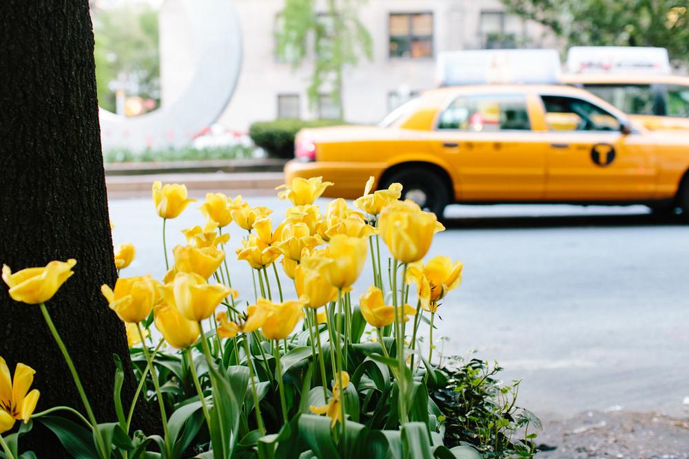 2013_nyc_may-2598.jpg