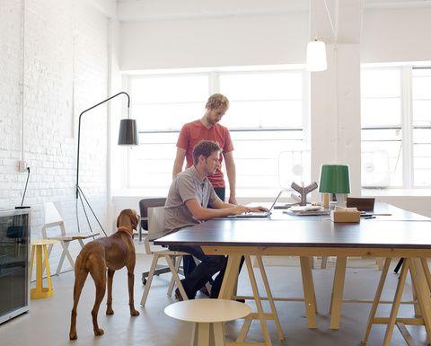 7. COMPARTE. Un escritorio central es una excelente manera de propiciar el trabajo en equipo. Puedes usar un comedor, considerando que los escritorios suelen ser un poco más altos. Contempla instalar contactos en un lugar donde no estorben los cables.