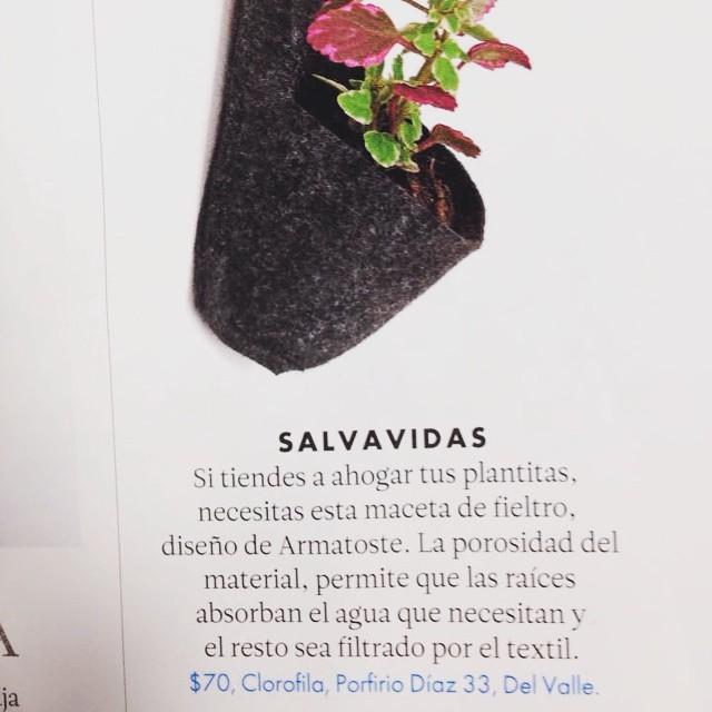 una pequea mencin en la revista elle decoration de verano de clorofilia con uno de los