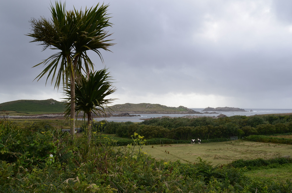 Looking West, towards the Atlantic. Bryher is the most Westerly place in England.