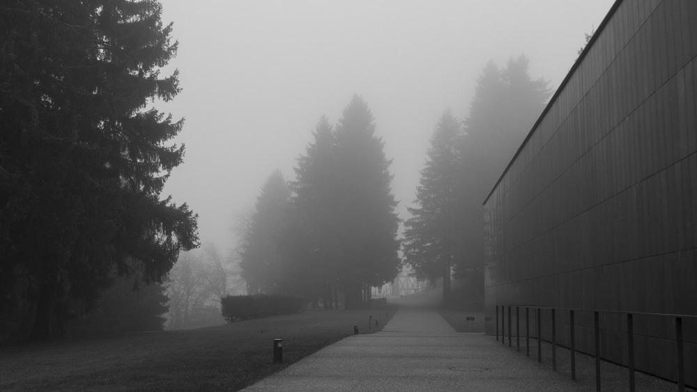 KZ Natzweiler-1.jpg