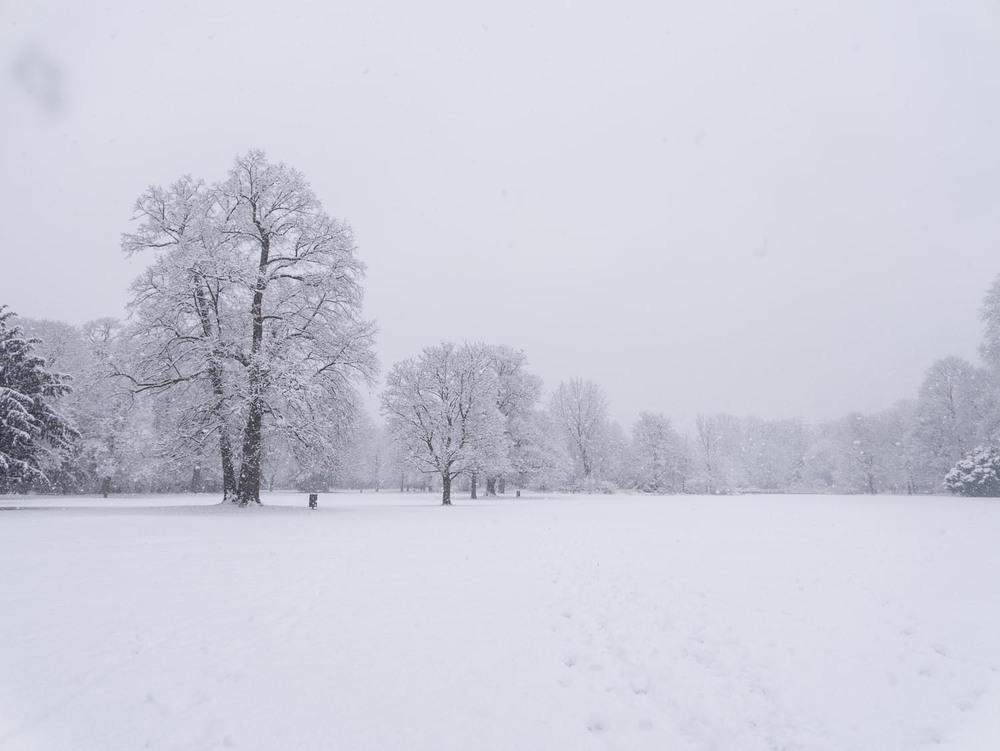 Schneefall- 02 - 2.jpg