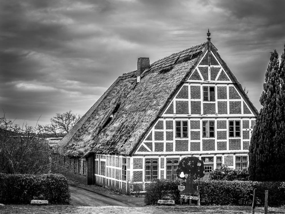 Altes Land-04-01.jpg