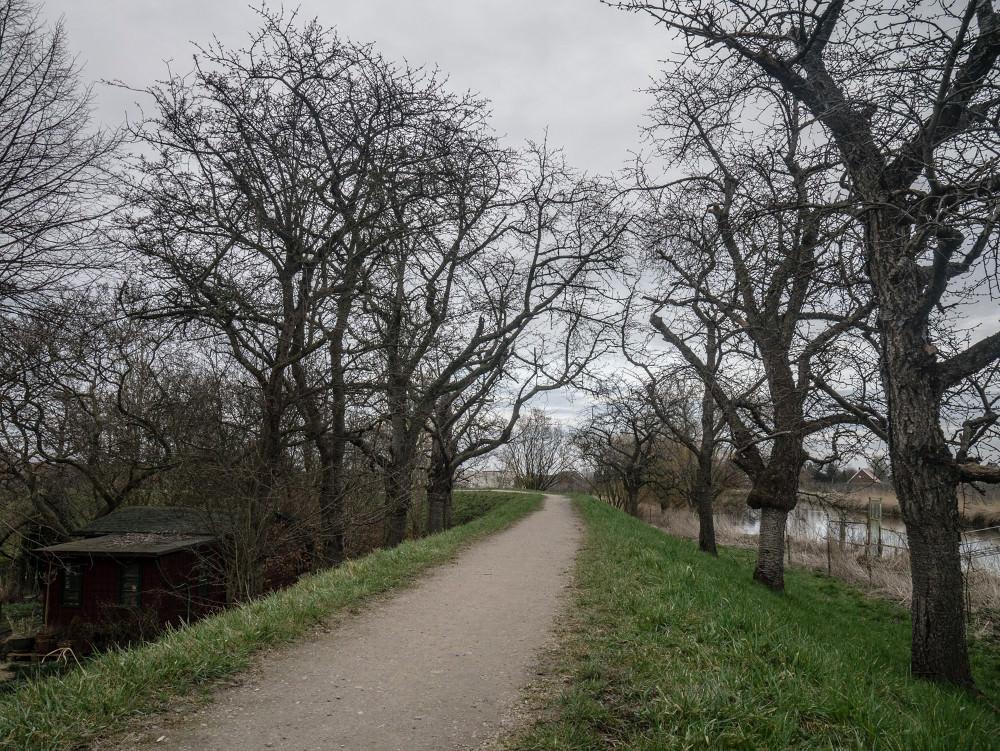 Altes Land-04-03.jpg