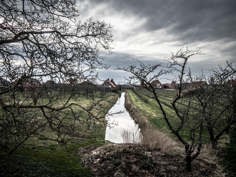 Altes Land-04-05.jpg