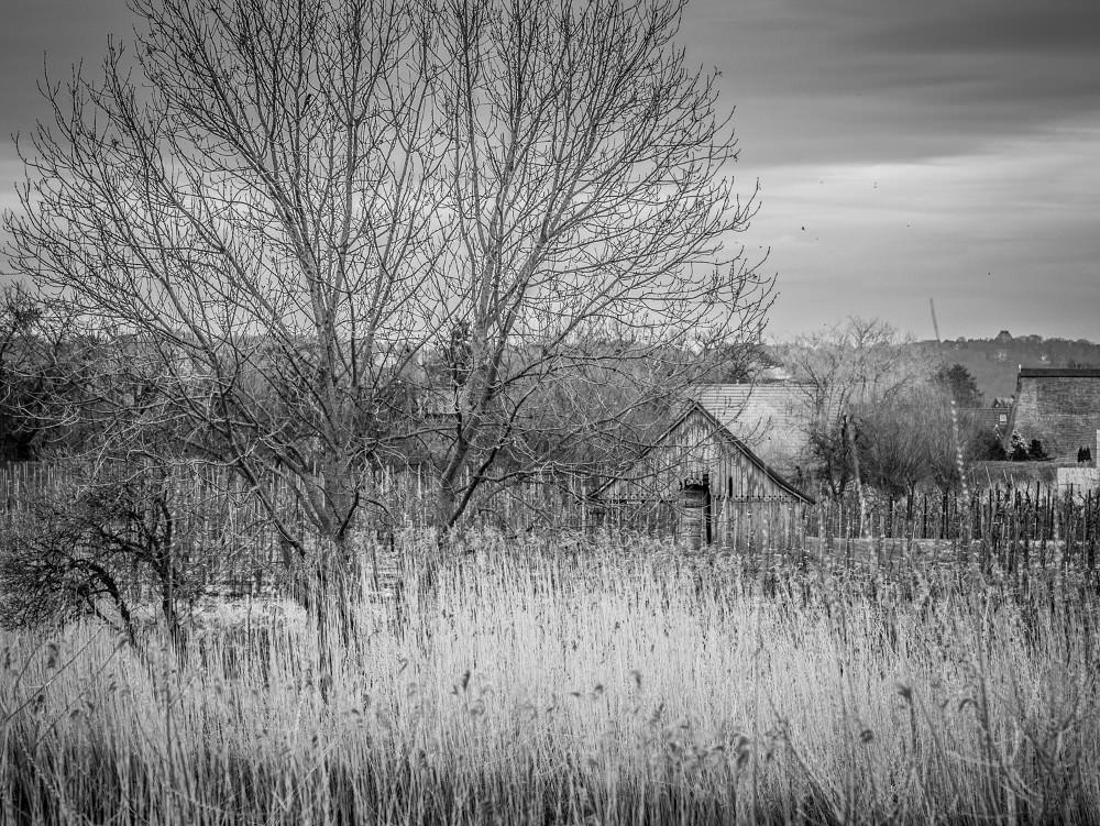 Altes Land-04-12.jpg