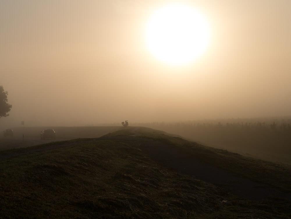 Deich und Feld gehaucht in Nebel, das Alte Land kann einen Sprachlos machen