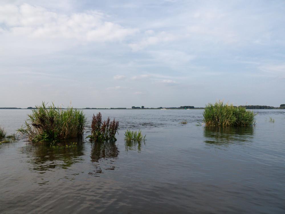 Elbe  - 03.jpg