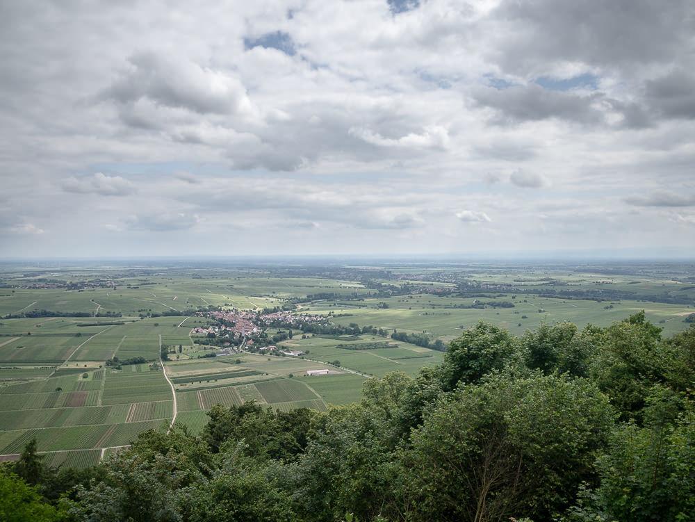 Pfalz  - 03.jpg