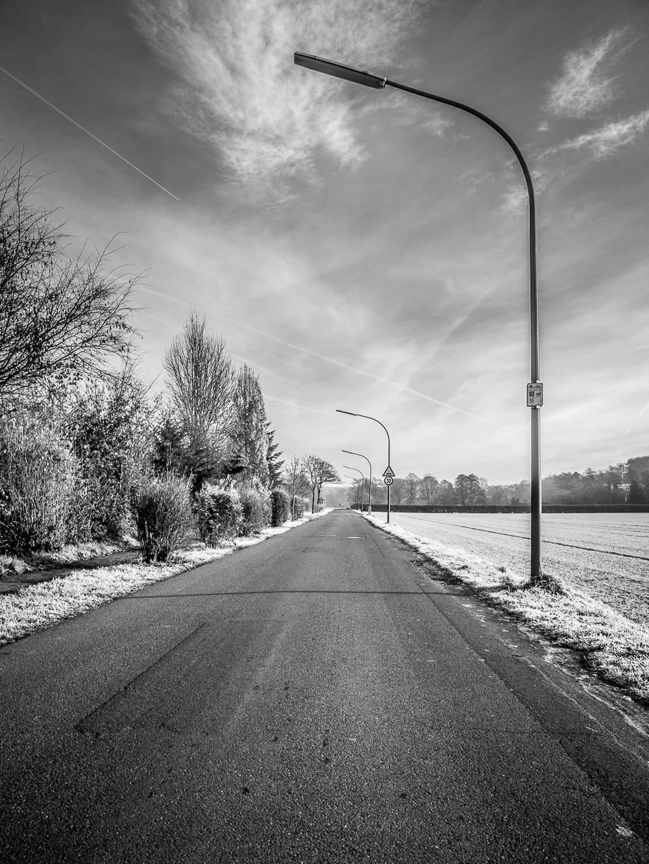 Frost  - 03.jpg