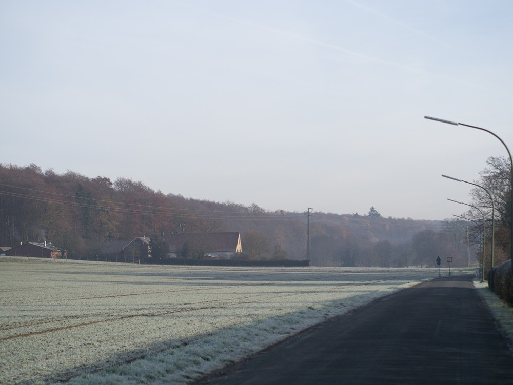 Frost 2  - 02.jpg