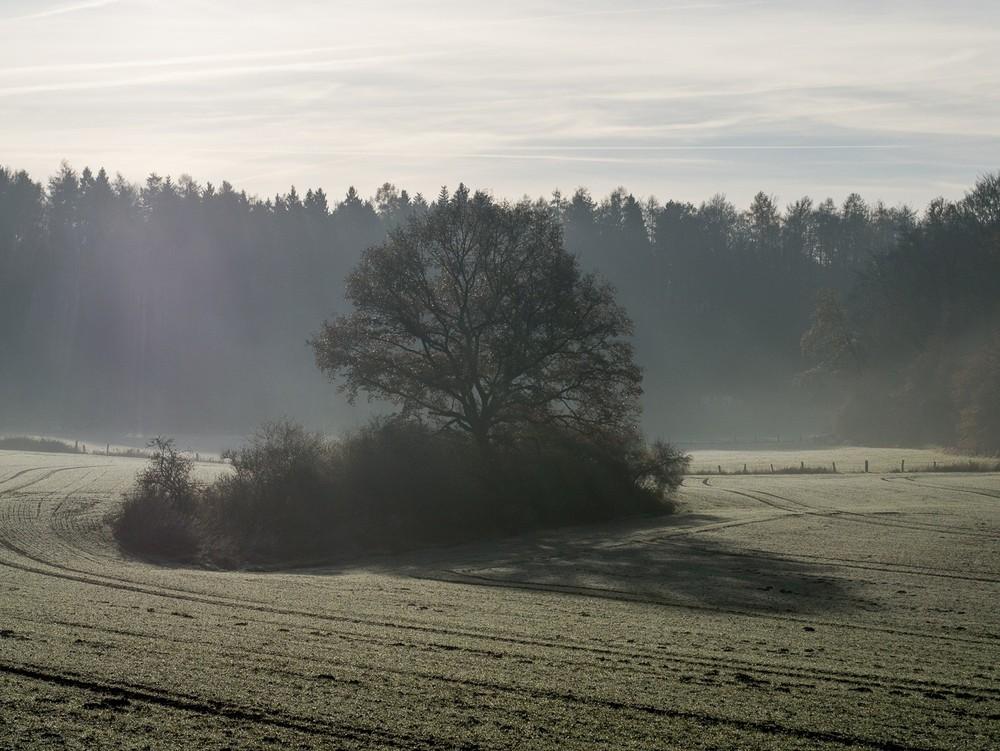 Frostfinale  - 03.jpg