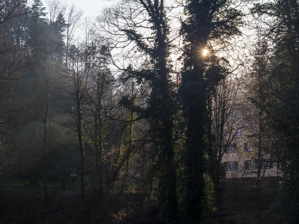 Ettlingen  - 06.jpg
