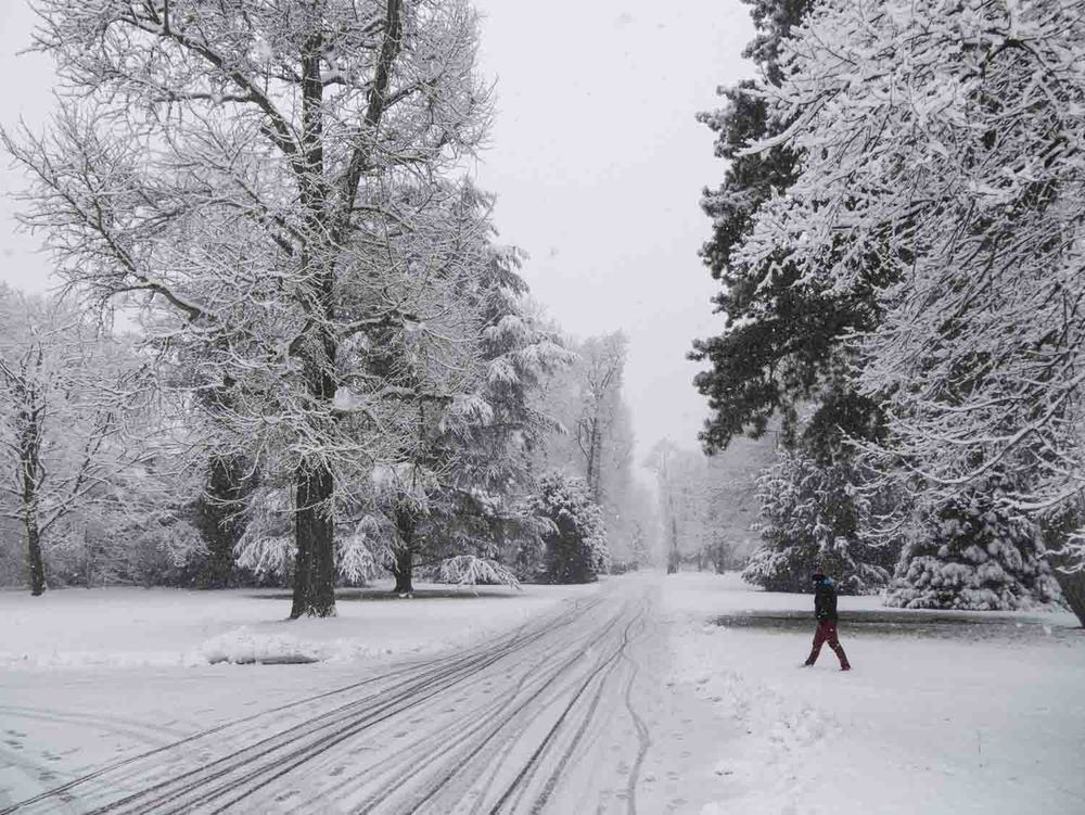 Wintereinbruch - 02 - 04.jpg