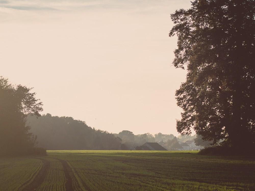 Herbst  - 10.jpg