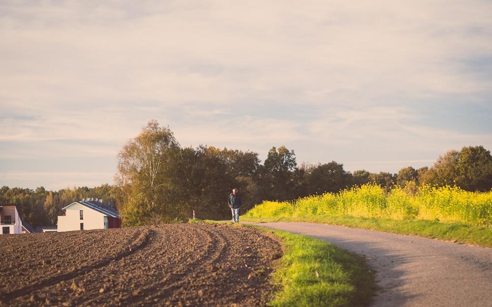 Herbst  - 12.jpg